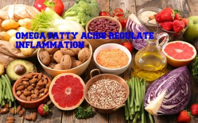 Nutrients in Food and their bodily purpose VII (Seeds and the omega fatty acids)