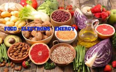 Nutrients in Food and their bodily purpose VIII(Nutrients required for cellular energy production)