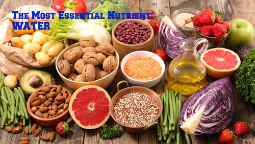 Nutrients in Food and their bodily purpose IX (Water I – Properties and body fluids)