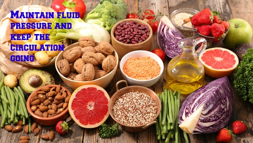 Nutrients in Food and their bodily purpose XIII (Water V- Body fluid dysfunction)