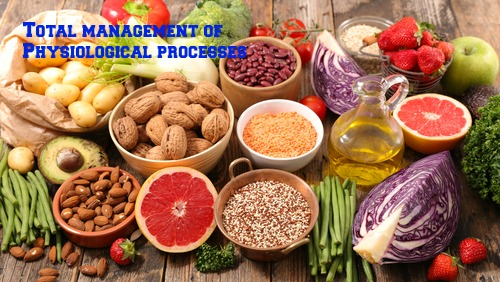 Nutrients in Food and their bodily purpose XVI (Nutrients involved in Methylation II)