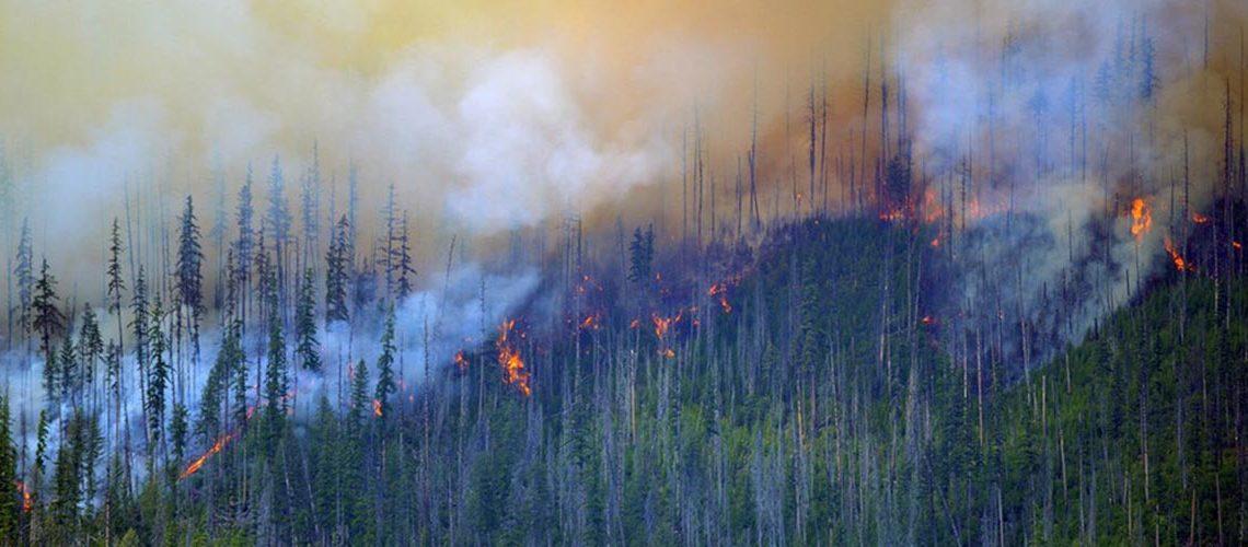 glacier burning wildfire