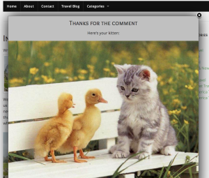 kittens for comments plugin