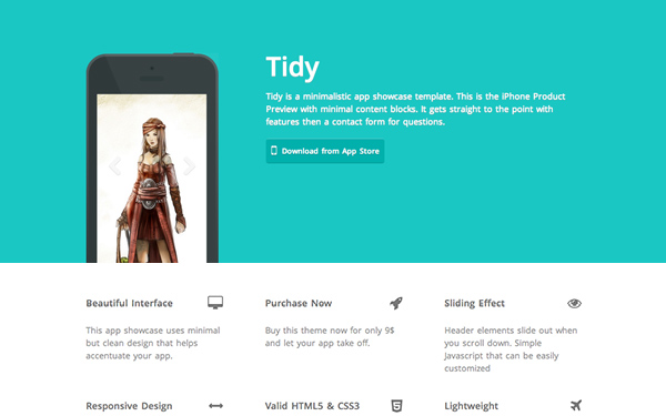 Tidy – Multi Purpose Responsive theme Free Download