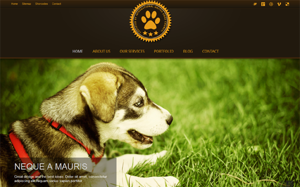 Pet Care Service Bootstrap Theme Free Download