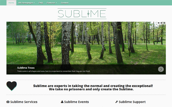 Sublime Business Theme Free Download
