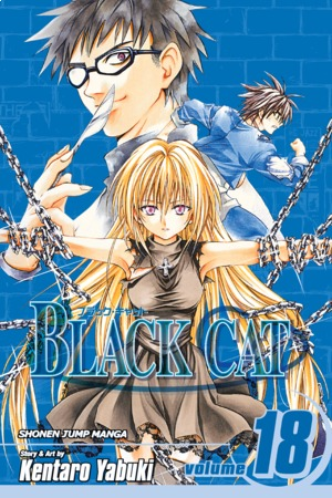 Black Cat Vol. 18: Guiding Light