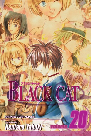 Black Cat Vol. 20: A Carefree Tomorrow