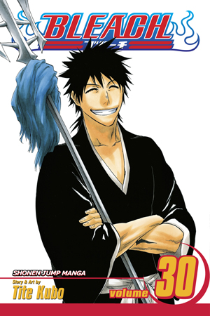 Bleach Vol. 30: There Is No Heart Without You