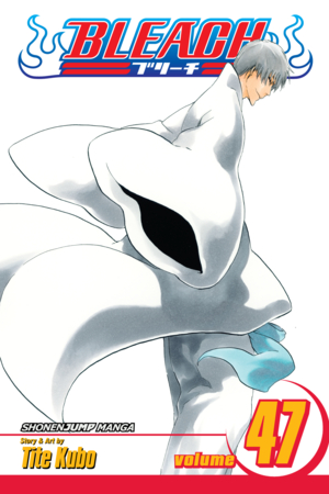 Bleach Vol. 47: End of the Chrysalis Age