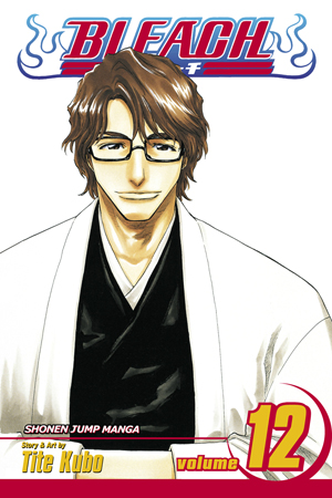 Bleach Vol. 12: Flower on the Precipice