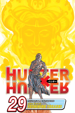 Hunter x Hunter Vol. 29: Memory
