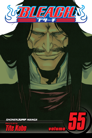 Bleach Vol. 55: The Blood Warfare