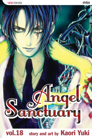 Angel Sanctuary Vol. 18: Heaven's Gate