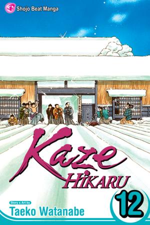 Kaze Hikaru Vol. 12: Kaze Hikaru, Volume 12
