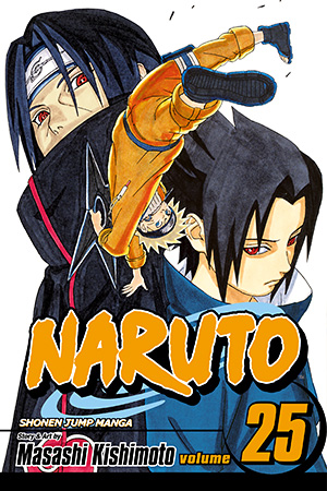 Naruto Vol. 25: Brothers