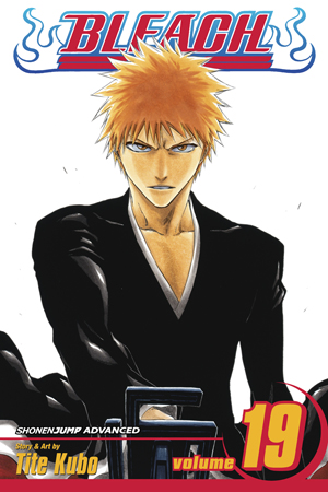 Bleach Vol. 19: The Black Moon Rising