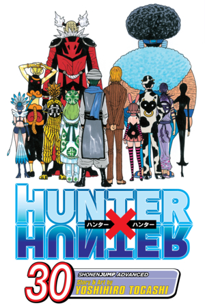 Hunter x Hunter Vol. 30: Answer