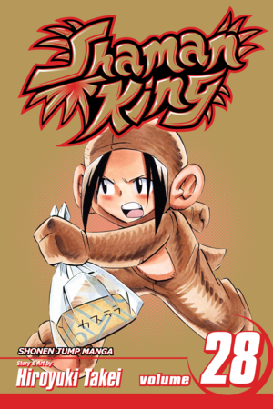 Shaman King Vol. 28: A Good Woman