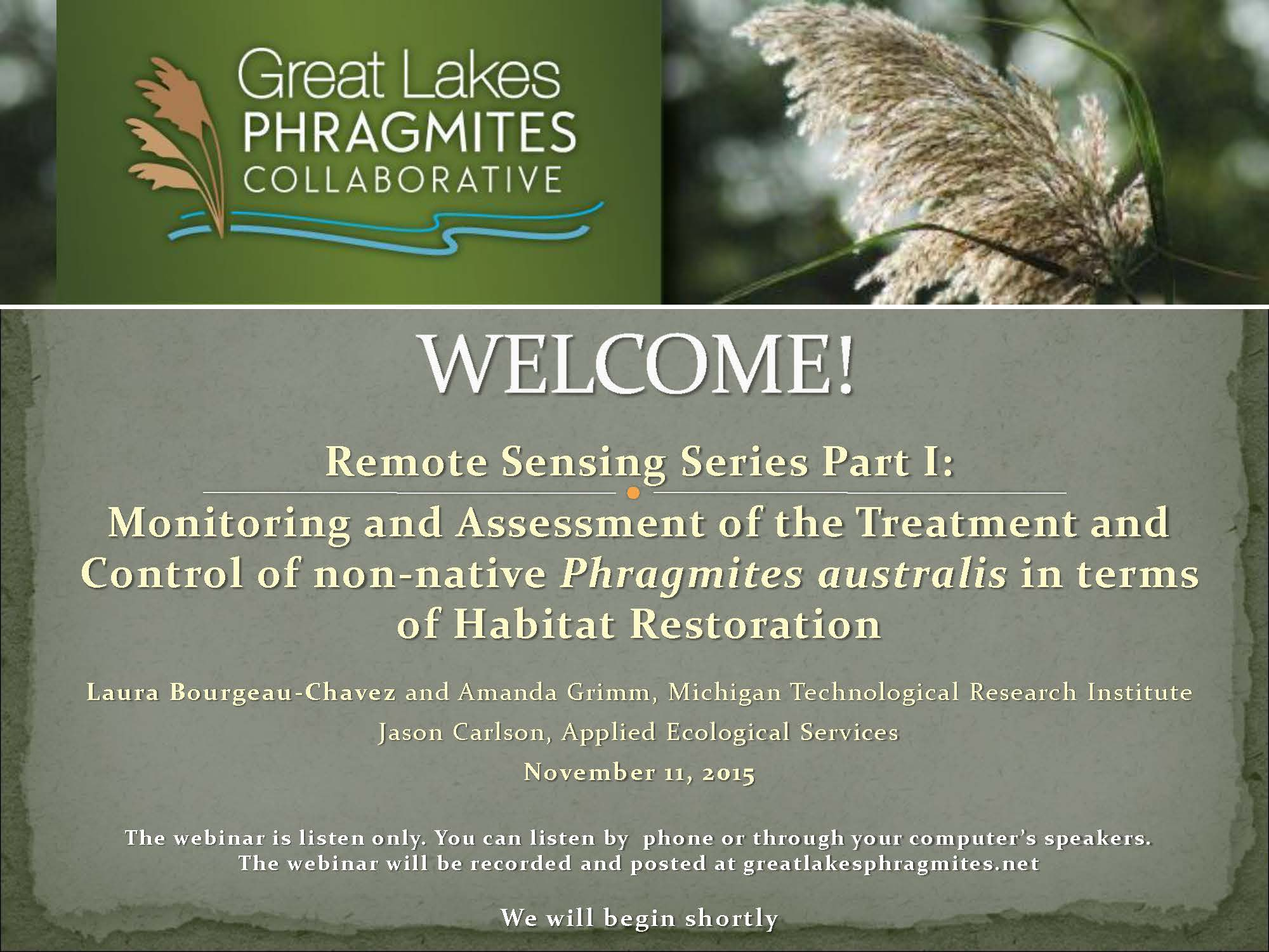 Webinar on Remote Sensing to Monitor Treatment of Phragmites