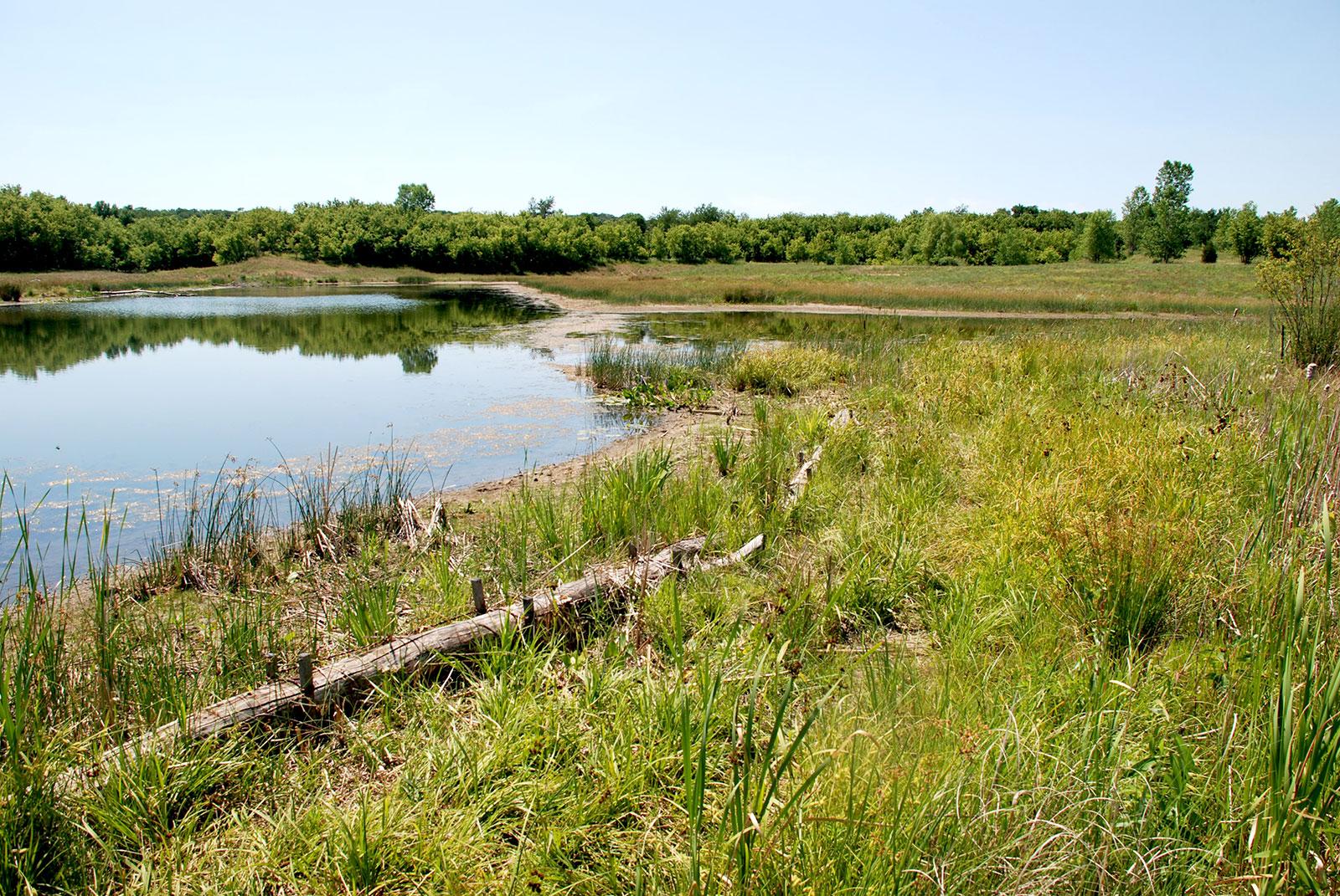 Jelkes Creek Preserve