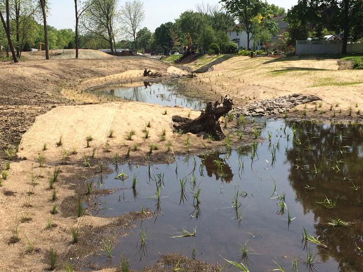 Carpenters Creek