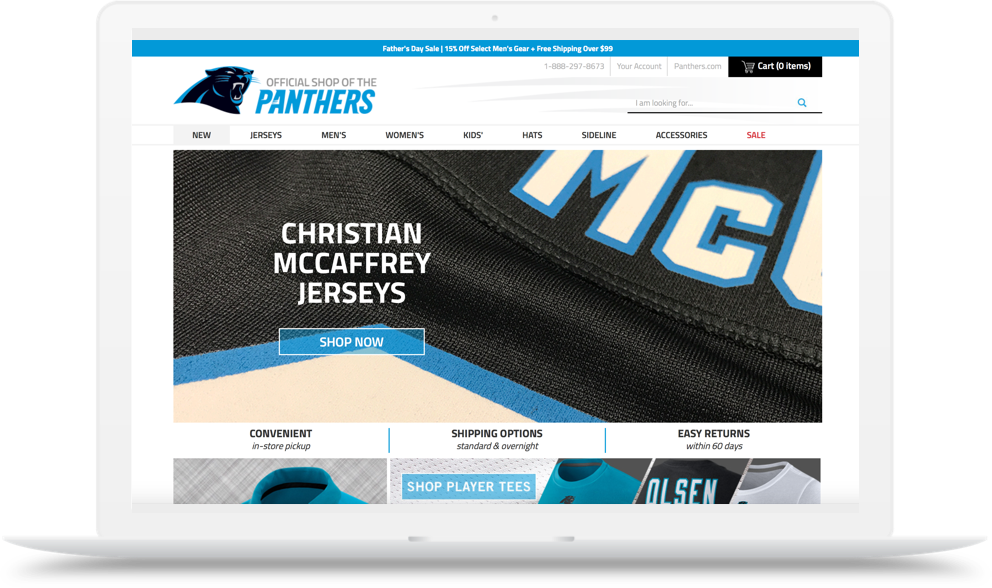 Carolina Panthers 2933 Hero 991X588 St Final