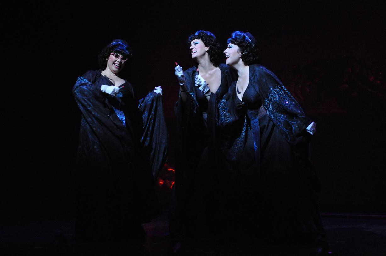 (on right) First Lady in The Magic Flute, Virginia Opera, 2013 (photo by David Adam Beloff)