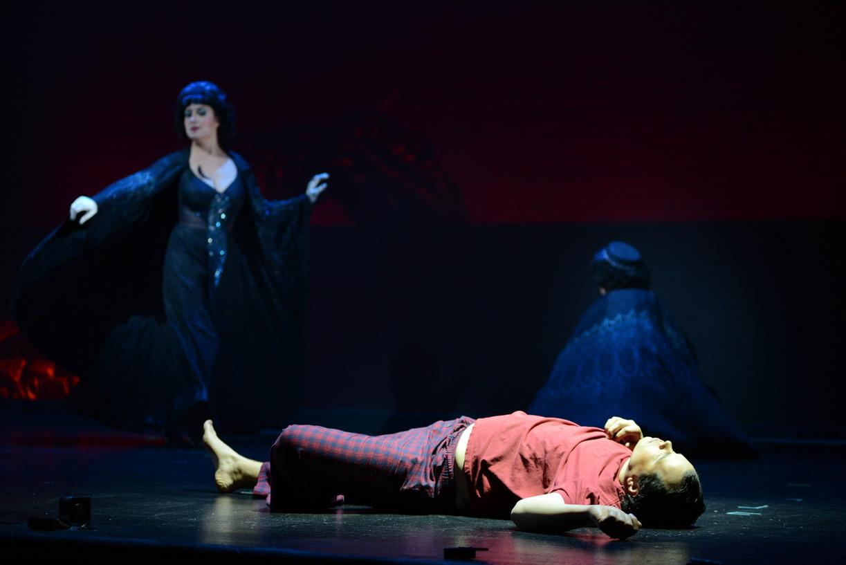 First Lady in The Magic Flute, Virginia Opera, 2013 (photo by David Adam Beloff)