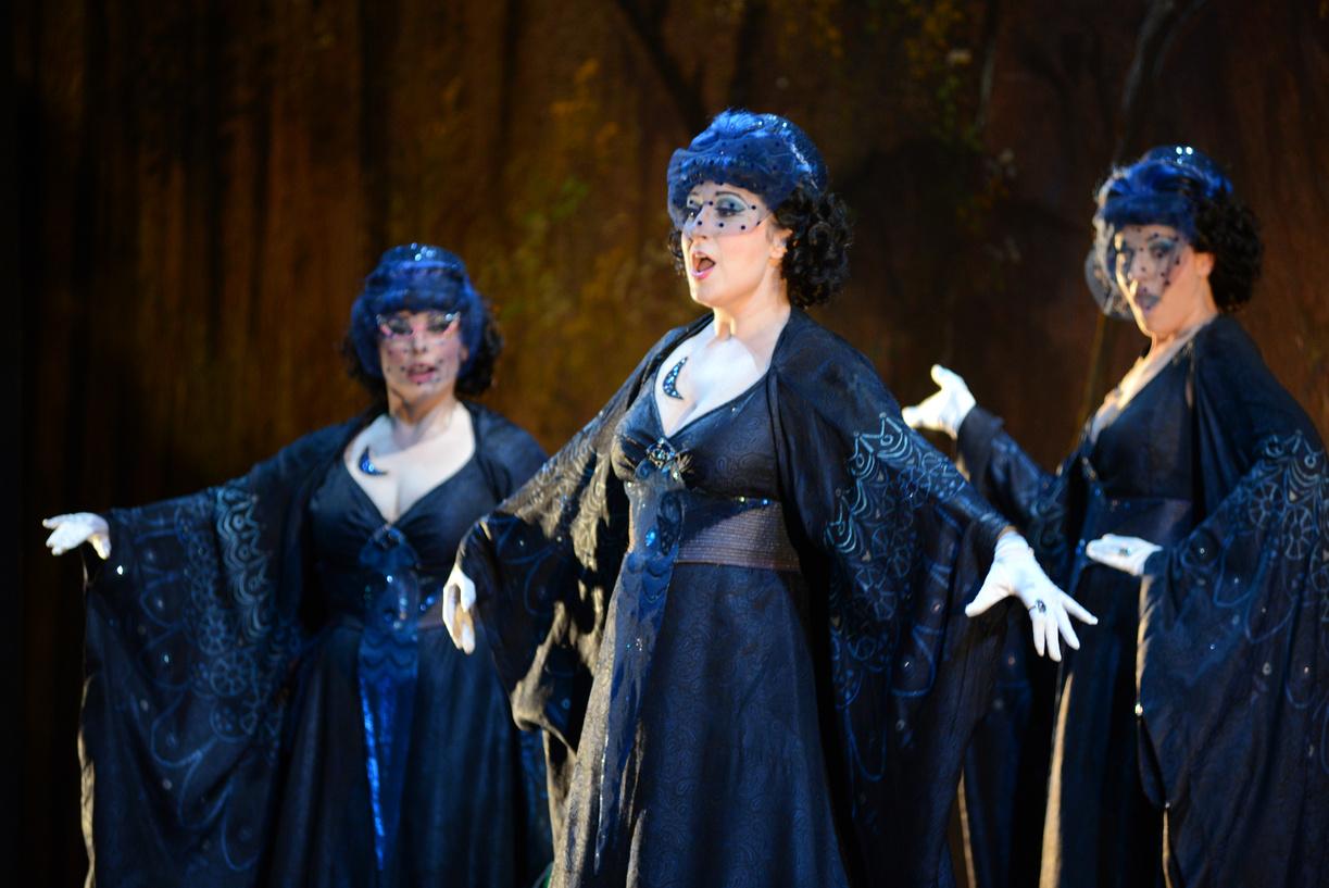 (at center) First Lady in The Magic Flute, Virginia Opera, 2013 (photo by David Adam Beloff)