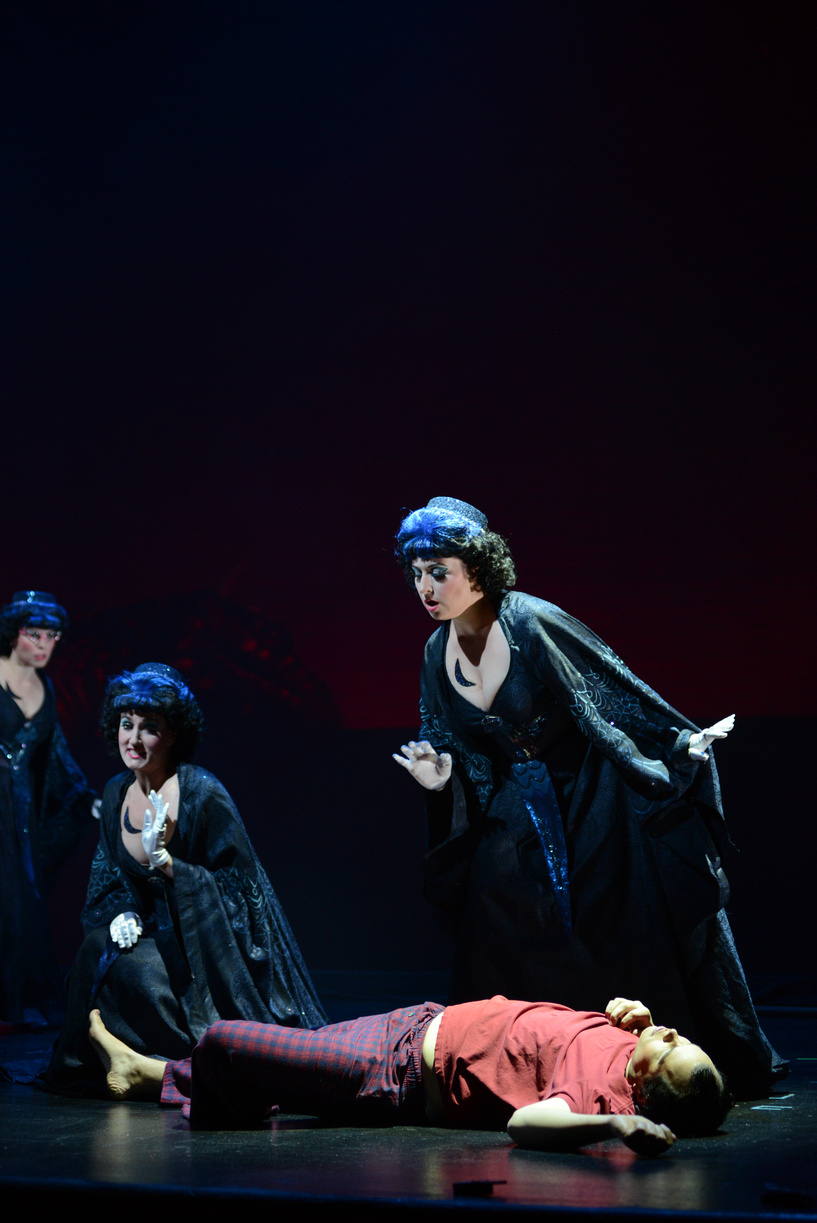 (pictured on right) First Lady in The Magic Flute, Virginia Opera, 2013 (photo by David Adam Beloff)