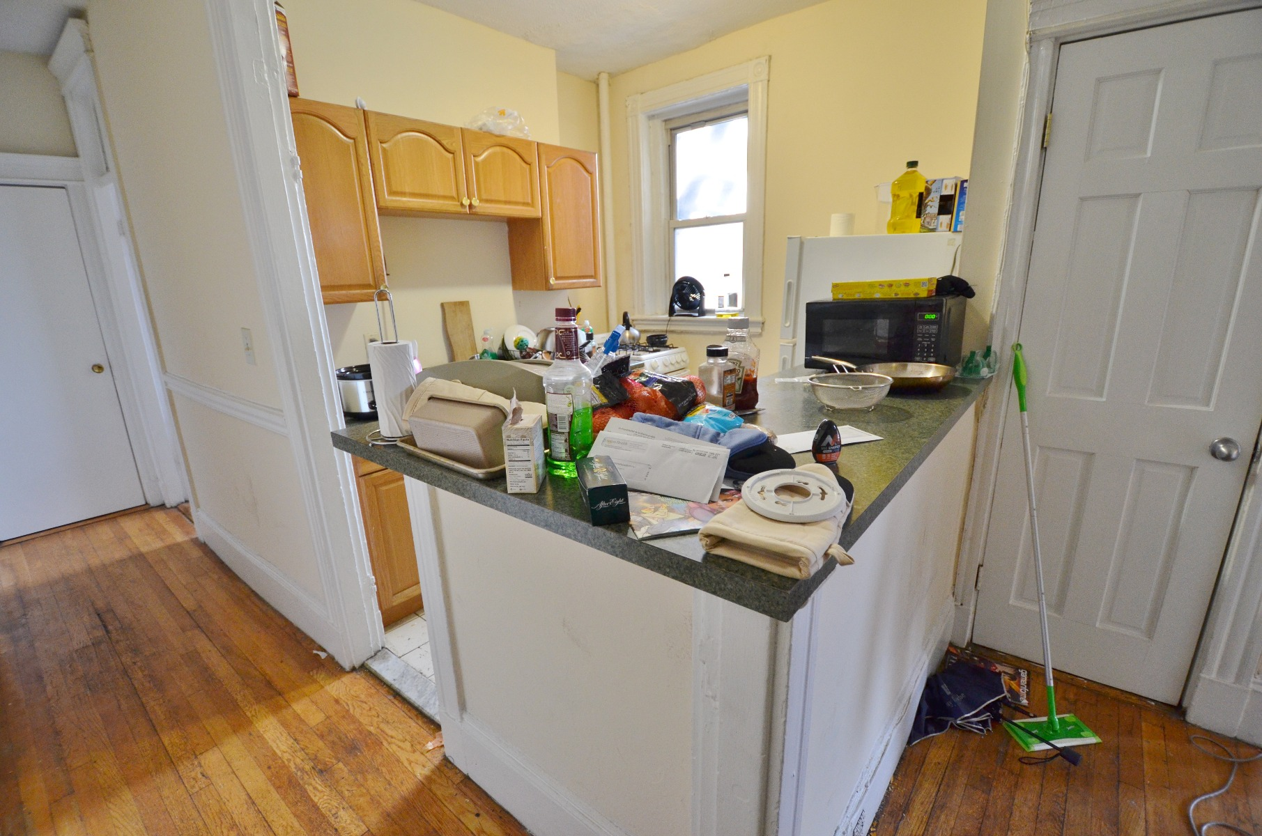 Avail 9/1 - Renovated Sunny Amazing 3BR Split on Peterborough St