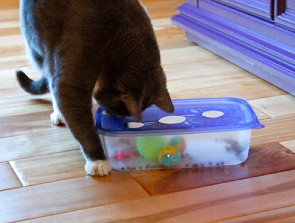 Как сделать игрушки своими руками для котят