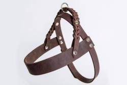 Cloud7 Central Park Leather Dog Harness