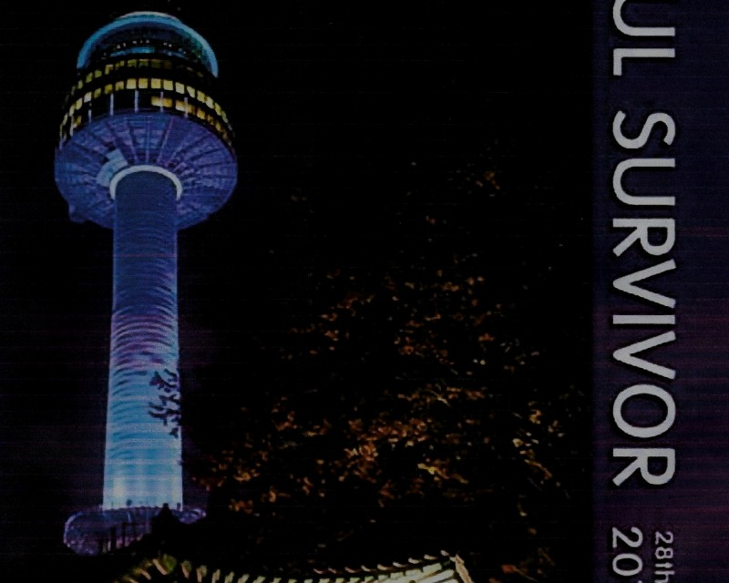Seoul Survivor 2014 2015 28th edition
