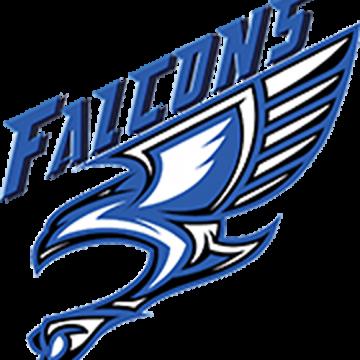 seoulamericanhs_mascot_falcons