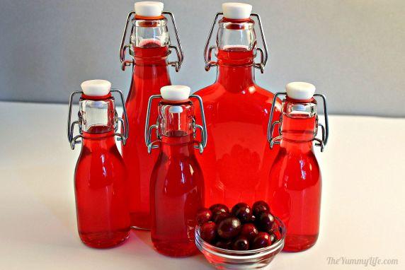 Homemade Cranberry Liqueur Recipe