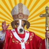Popedog