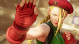 09_cammy_intro