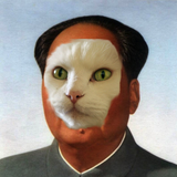 Chairman meow square