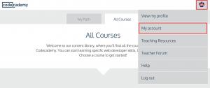 Codecademy Finding Username