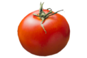 Parents_expanded_original_tomato_whole_lg