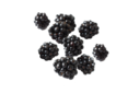 Parents_expanded_original_blackberries