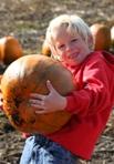 Original_boy-pumpkin-image