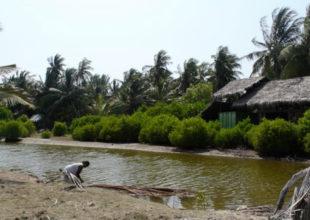Rena Osmanın Bloqu | Şri-Lankaya səyahətimdən 10 maraqlı fakt