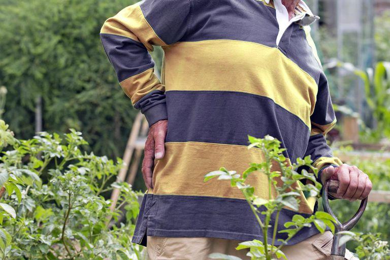 Avoid Gardening Injuries featured image
