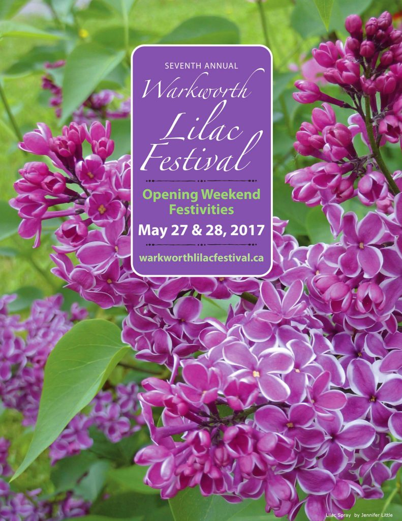 Enjoy Fragrant Early, Mid And Late Bloomers In Warkworth