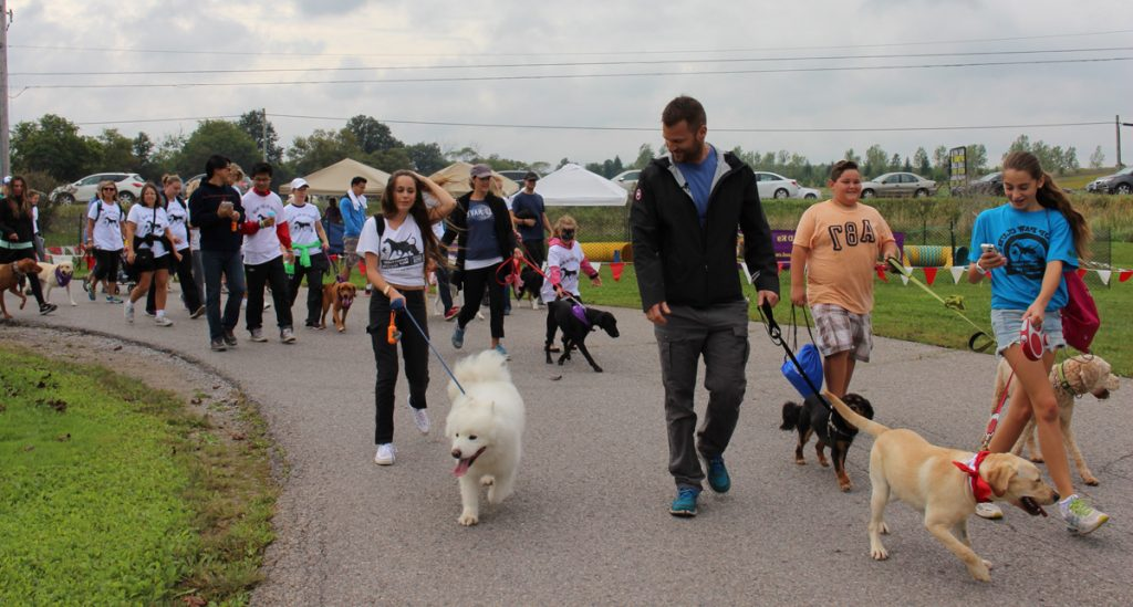 """""""Lace Up"""" And """"Put On Your Favorite Super Hero Costume"""" As You Support The Barrie SPCA featured image"""