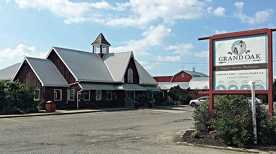 Anti-Noise Pollution League: Grand Oak Culinary Market featured image