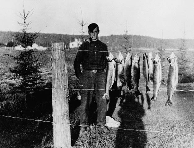 Looking Back – Tom Thomson featured image